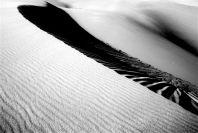 thurra-dunes-9429