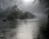 flooded-brogo-river