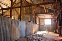 gum-woolshed-8887
