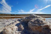 lake-torrens-salt-8743